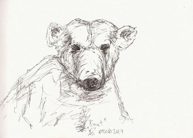 Eisbär, Knut, Naturkundemuseum Berlin
