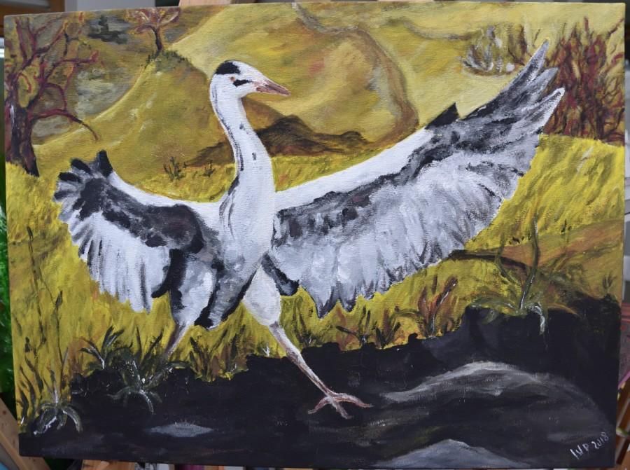 Landung eines Graureihers