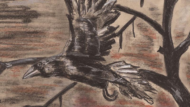 Abendzeichnung: Krähe