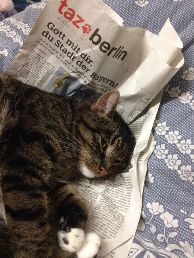 Alltag (3) – Tageszeitung ausPapier