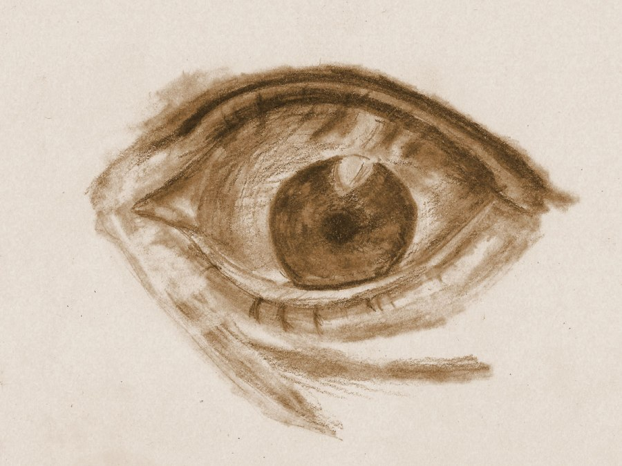 Detail – Auge