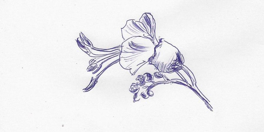 Kastanienzweig. Erste Blüten