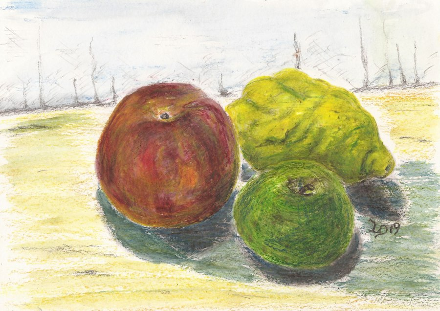 Stillleben-Etüde. Obst