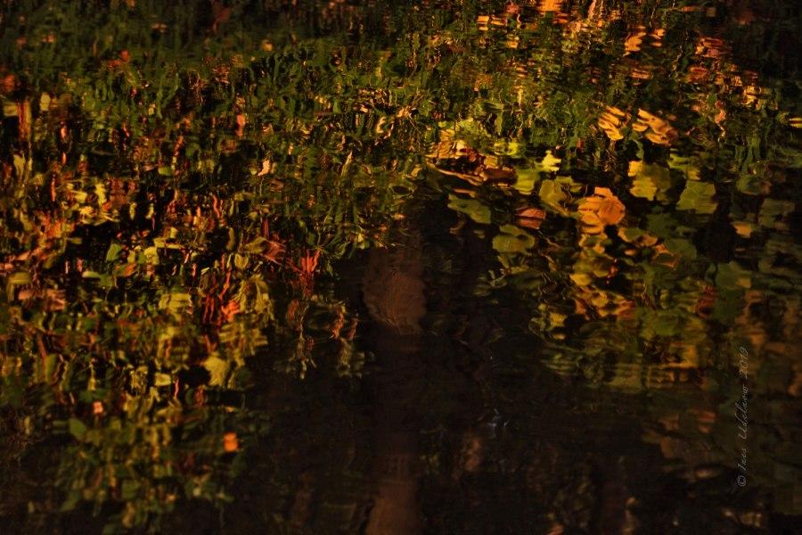 Herbstleuchten. Elfenzauber