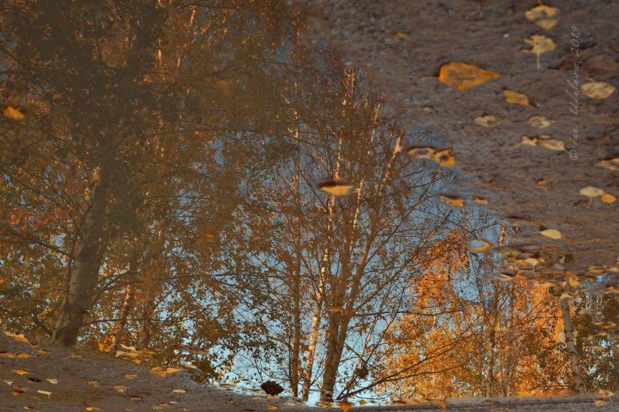 Herbstleuchten. Es glitzert und funkelt…