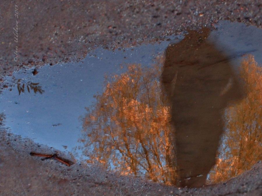 Herbstleuchten. Sie läuft und läuft und läuft…
