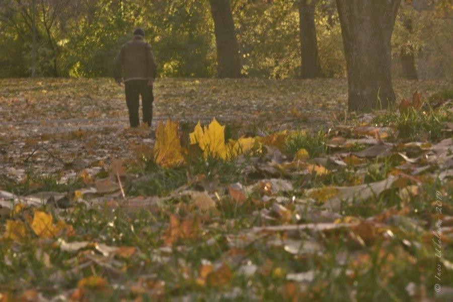 An einem Herbsttag…