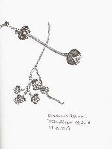 Blütenknospen der Kornellkirsche, Tiergarten Berlin, Tintenstift, Notizbuch A5, 18.02.2019
