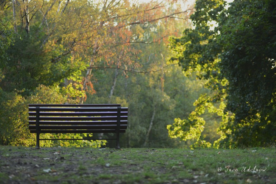 Einsamkeit ist keineKategorie
