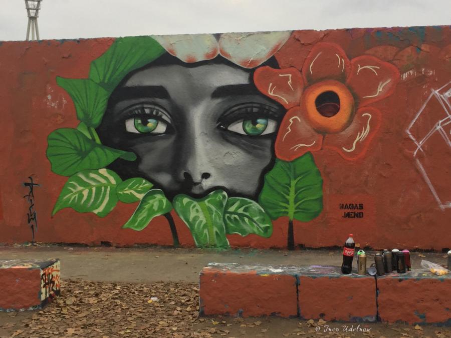 Fremde Federn. Streetart aus demMauerpark