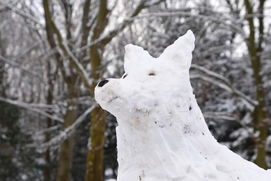 Sonntagmorgengruß mit Schneehund