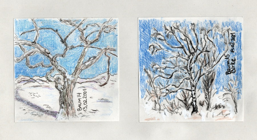 30 Tage – 30 Bäume. Baum 14 bis16