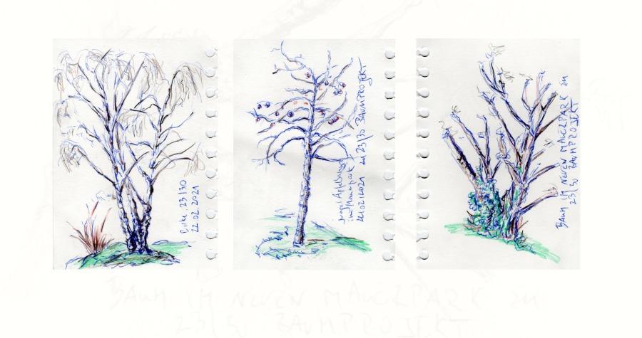 30 Tage – 30 Bäume. Bäume 23, draußengezeichnet